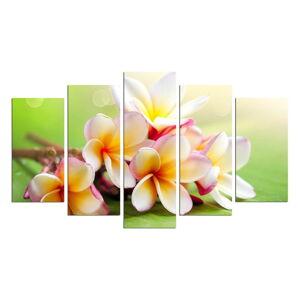 Vícedílný obraz Flower And Green Colour, 110x60 cm