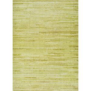 Zelený venkovní koberec Universal Vision, 50 x 100 cm