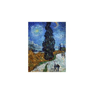 Reprodukce obrazu Vincent van Gogh - Country Road in Provence by Night,80x60cm