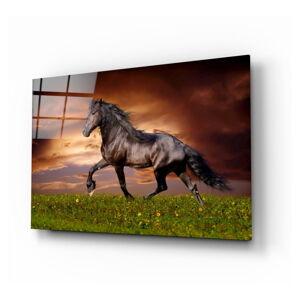 Skleněný obraz Insigne Nobility of the Horse,110 x70cm