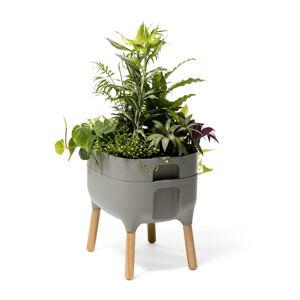 Šedá pěstební samozavlažovací nádoba Plastia Low Urbalive, výška 48 cm