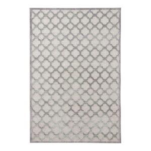 Šedý koberec z viskózy Mint Rugs Bryon, 160 x 230 cm