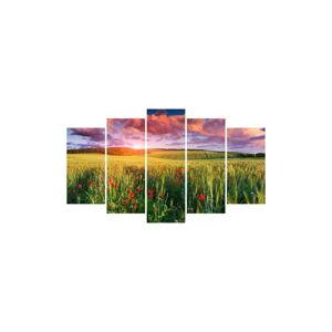 Vícedílný obraz Insigne Dinsie, 102x60cm