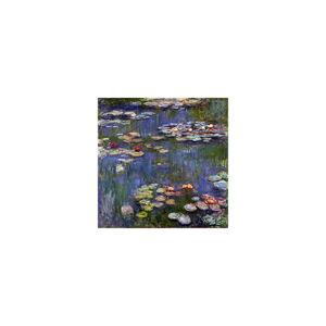Reprodukce obrazu Claude Monet - Water Lilies,50x50cm