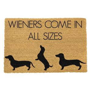 Rohožka z přírodního kokosového vlákna Artsy Doormats Weiners Come In All Sizes,40x60cm